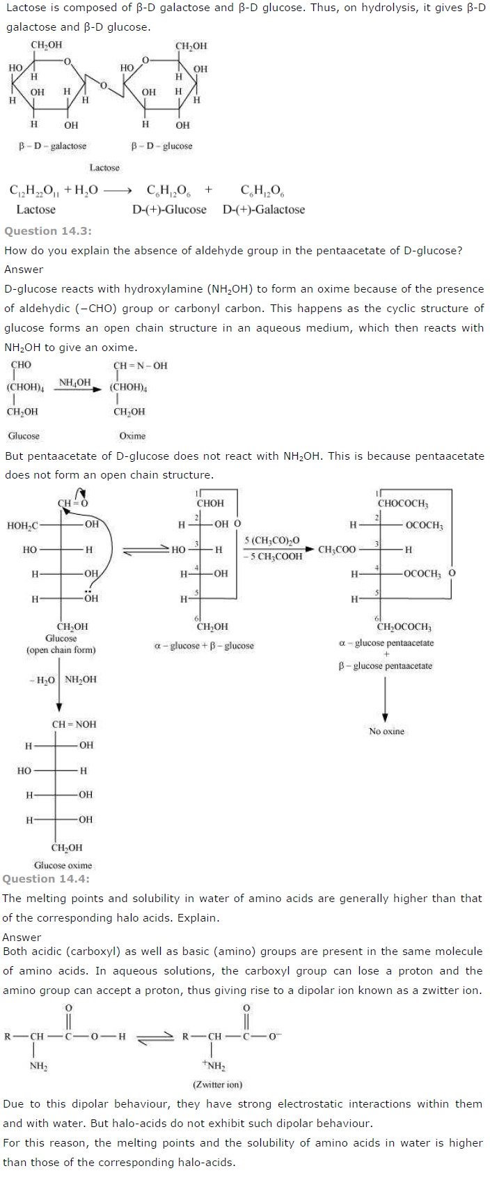 NCERT Solutions Class 12th Chemistry Chapter 14 Biomolecules