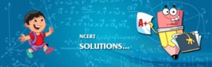NCERT Solutions For Class 8 Maths Ch 2 Linear Equations In One Variable NCERT Solutions For Class 8 Geography CBSE Answers PDF Download 2018 2019 NCERT Solutions For Class 8 Civics Ch 1 The Indian Constitution CBSE Answers PDF Download 2018 2019