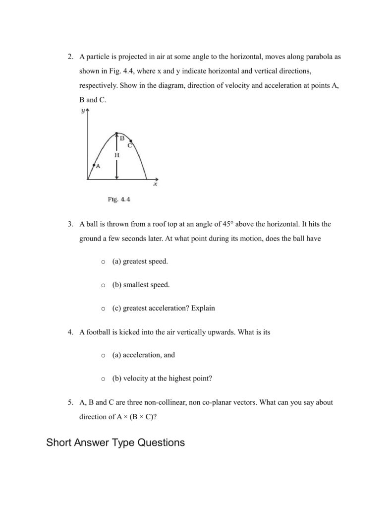 Important Questions For Class 11 Physics Chapter 3 Motion in a Straight Line