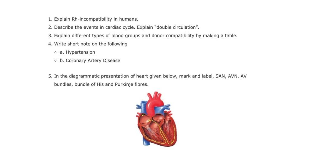 Important Questions For Class 11 Biology Chapter 18 Body Fluids and Circulation