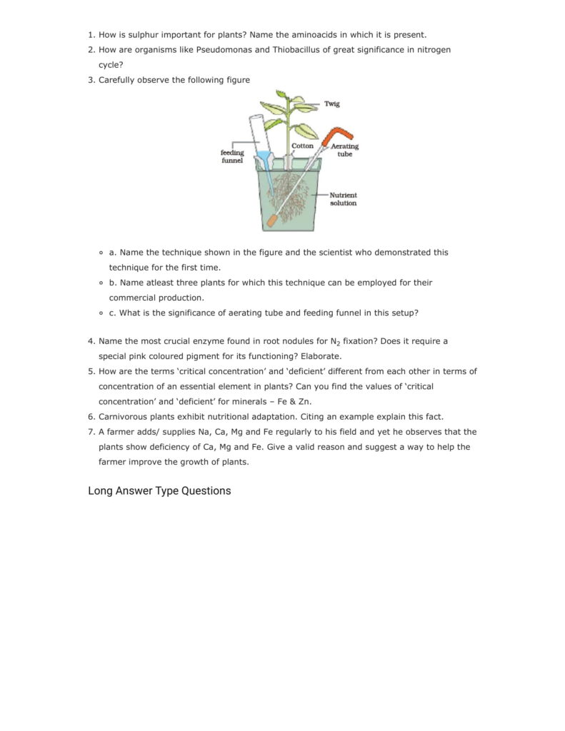 Important Questions For Class 11 Biology Chapter 12 Mineral Nutrition