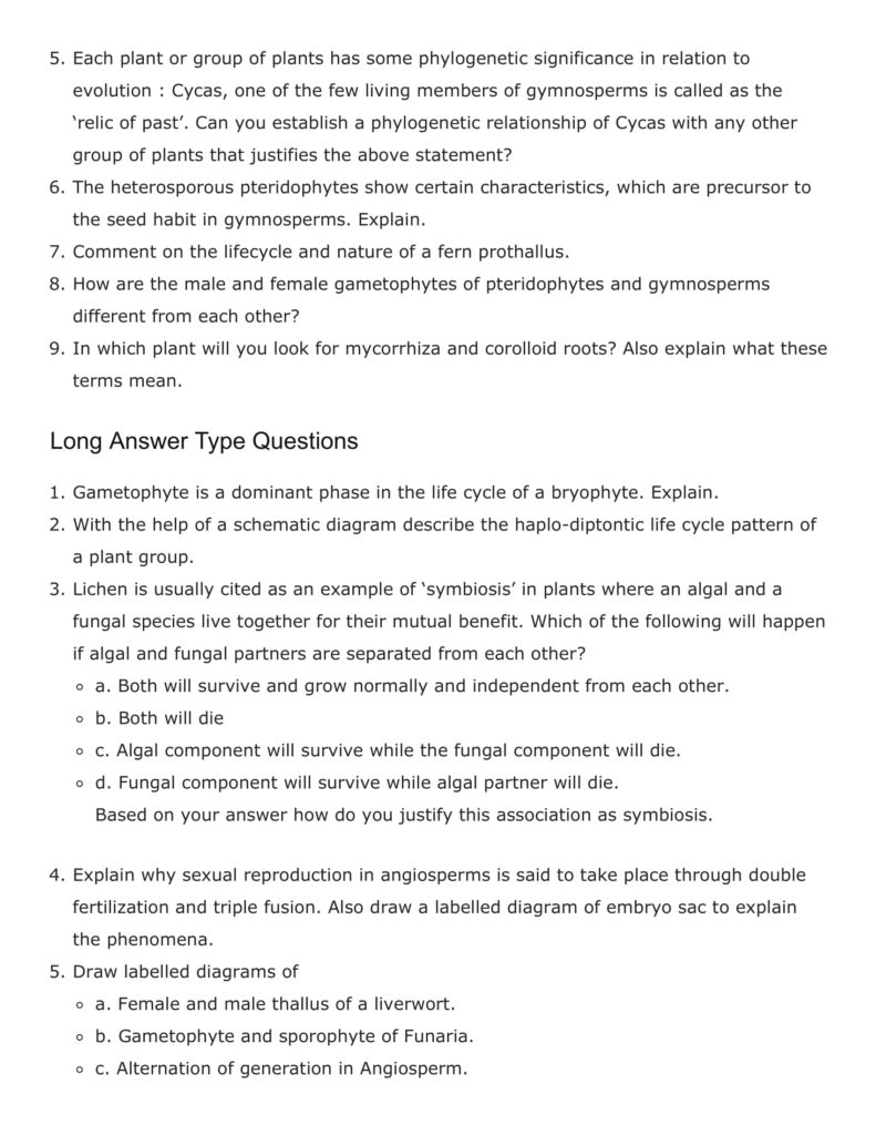 Important Questions For Class 11 Biology Ch 3 Plant Kingdom