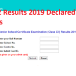 CBSE Class 12 Results 2019 Declared - Check XII Board Results