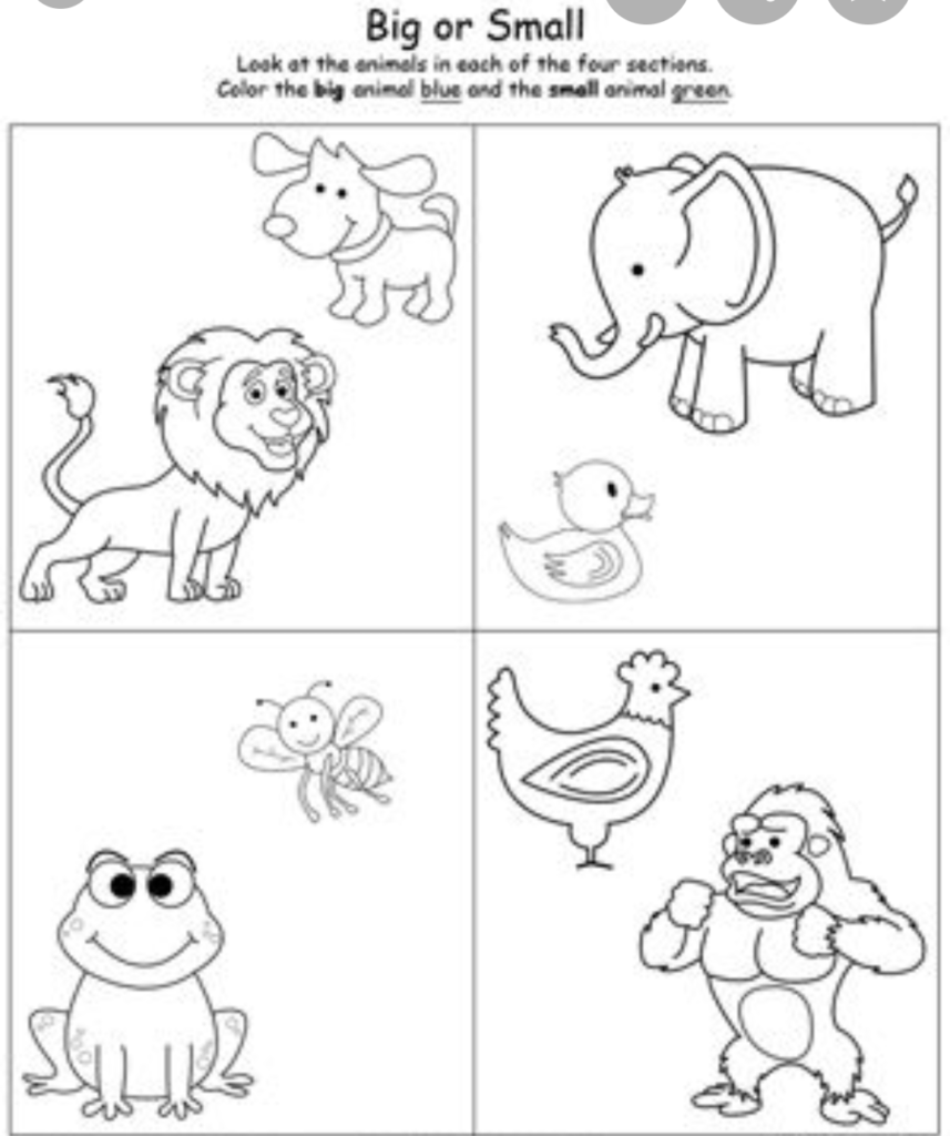 Maths Topic: Big and Small - Worksheet